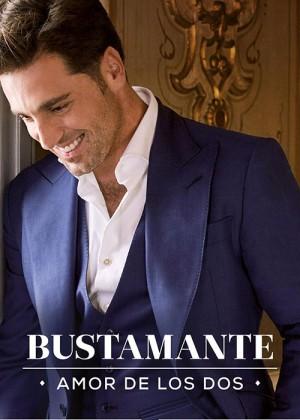 Concierto de David Bustamante en Bilbao