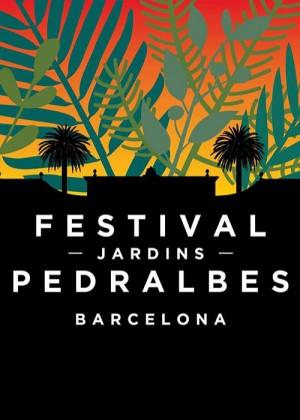 Concierto de Yann Tiersen en Barcelona