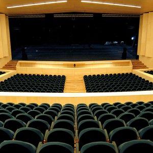 Imagen de Teatro Buero Vallejo de Guadalajara