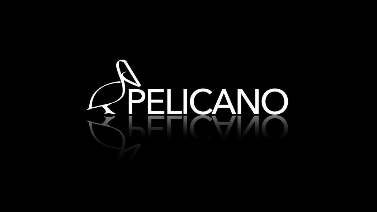 Logo de El Pelícano de A Coruña. Discoteca y Sala de Conciertos.