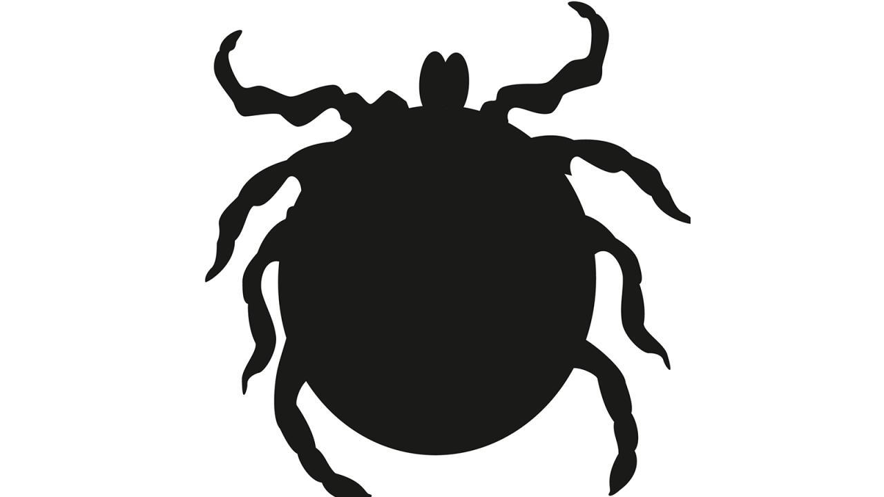 Logo de La Garrapata