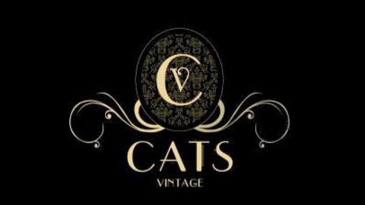 Logo de Sala Mitty Cats