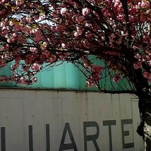 Baluarte. Palacio de congresos y Auditorio de Pamplona