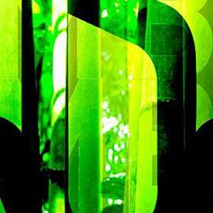 Sala Bamboo