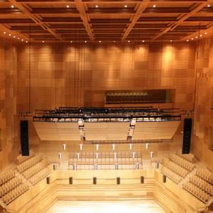 Imagen de Auditorio Miguel Delibes