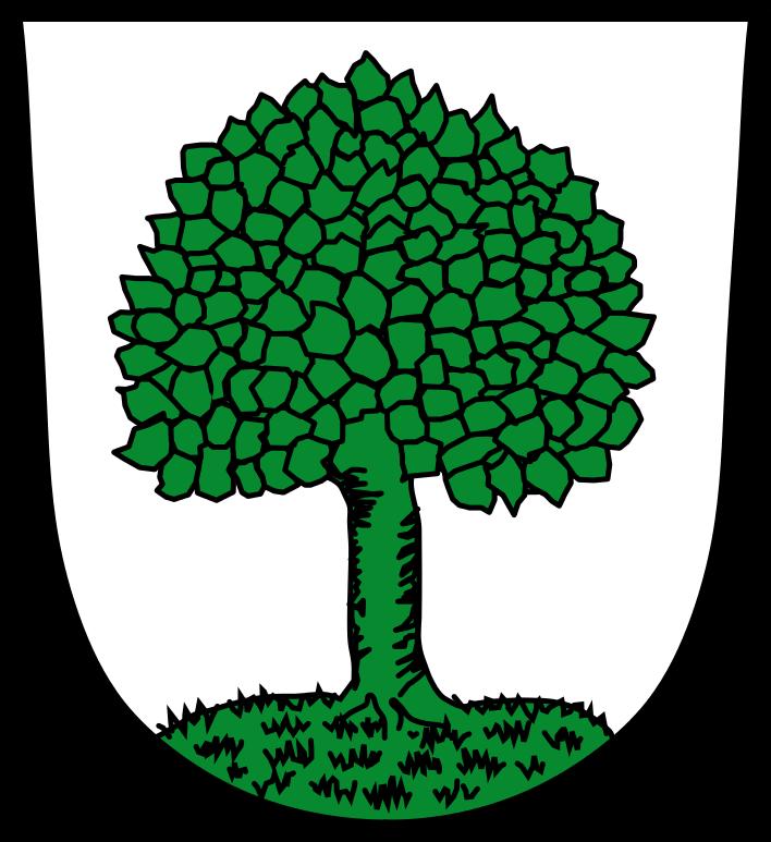 Wappen der Stadt Bad Kötzting