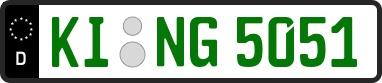 Grüne Kennzeichen Aussehen