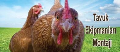 Oğuz Montaj Kümes Ve Tavuk Ekipmanları