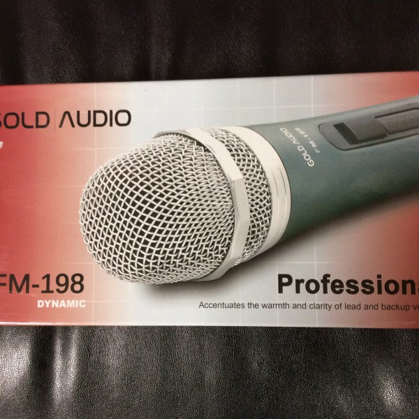 GOLD AUDIO FM-198A