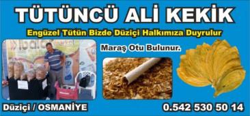 Tütüncü Ali