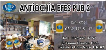 Antihochia Efes Pub 2