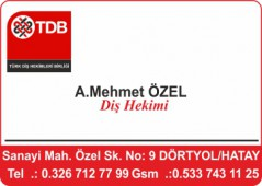 Dr. A. Mehmet ÖZEL