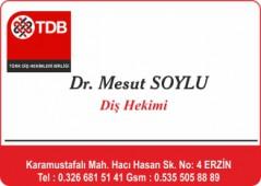 Dr. Mesut SOYLU