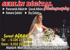 Serlin Digital