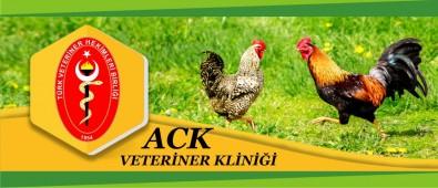 ACK Veteriner Kliniği
