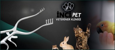 İncipet Veteriner Kliniği