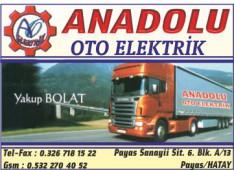 Anadolu Oto Elektrik