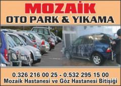 Mozaik Oto Park & Yıkama