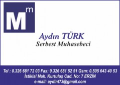 Aydın Türk