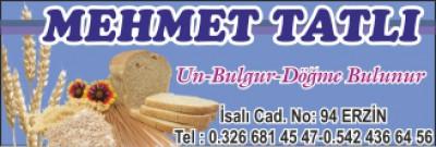 Mehmet Tatlı
