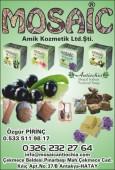 Mosaic Amik Kozmetik Ltd.Şti.