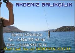 Akdeniz Balıkçılık
