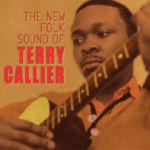 THE NEW FOLK SOUND (CD)