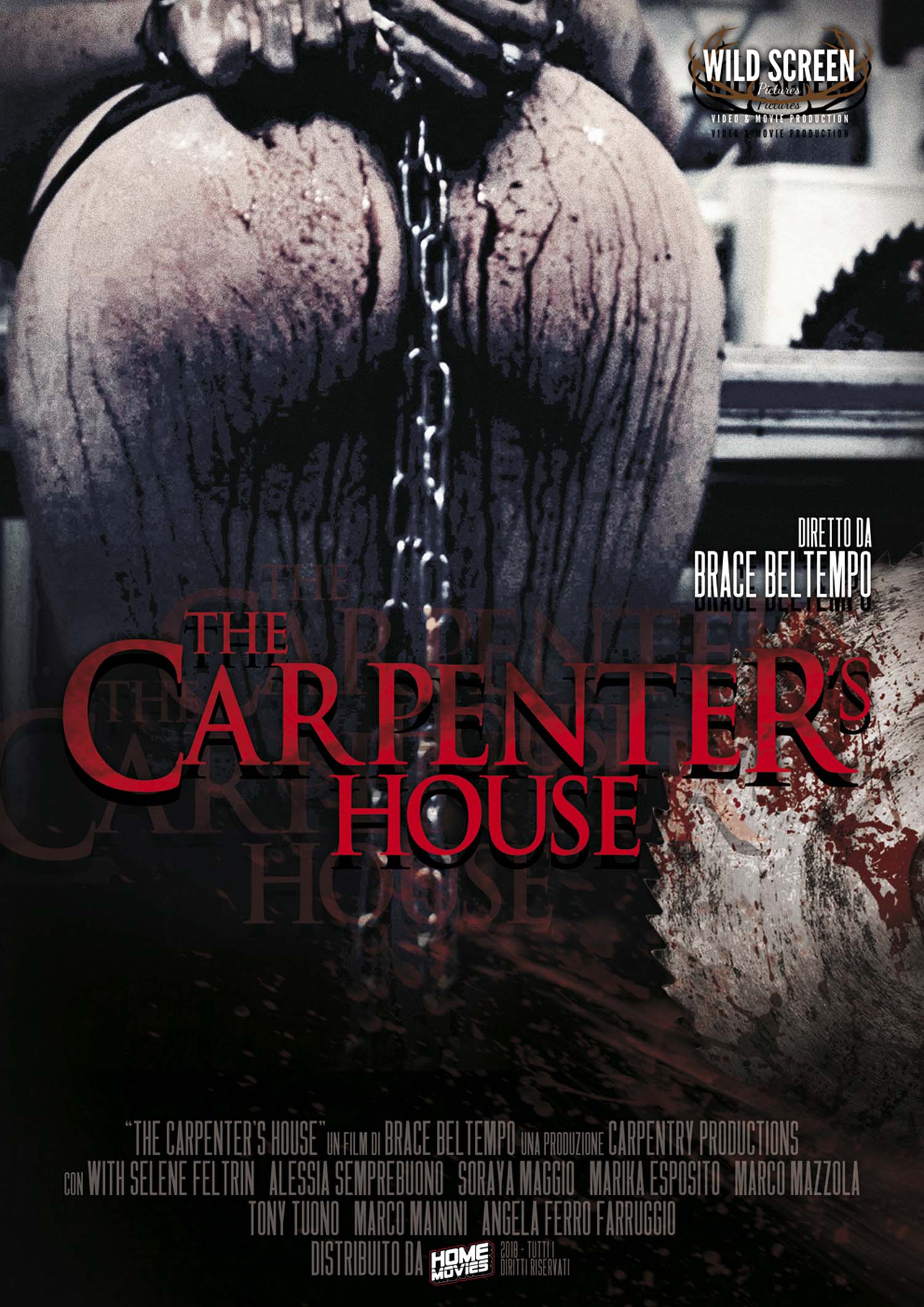 THE CARPENTER'S HOUSE (DVD)