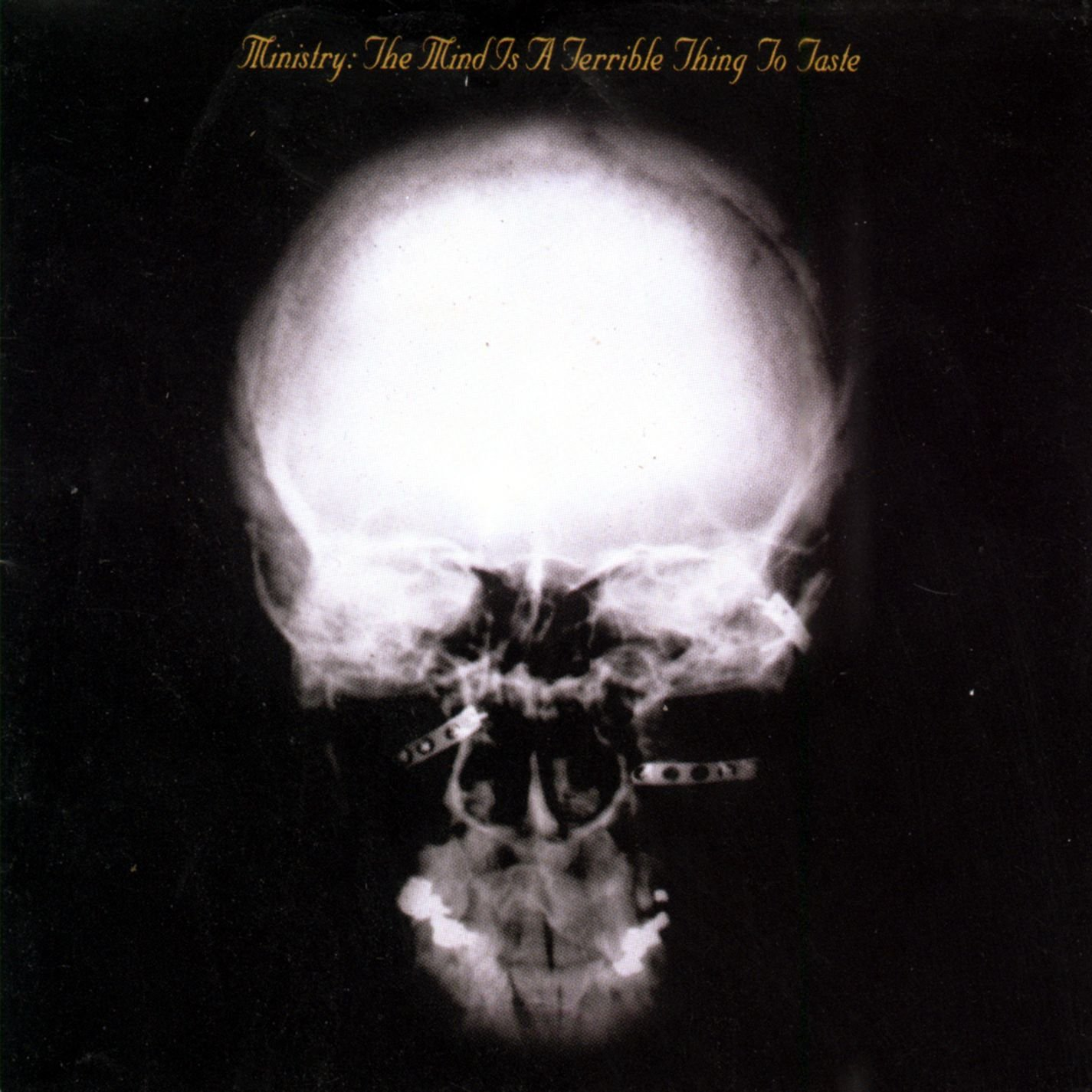 MINISTRY - THE MIND IS A TERRIBLE THING TO WASTE (CD)