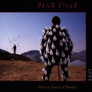 PINK FLOYD - DELICATE SOUND OF THUNDER -2CD (CD)
