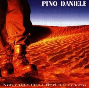 PINO DANIELE - NON CALPESTARE I FIORI NEL DESERTO (SLIM BOX) (CD