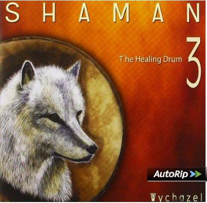 SHAMAN 3: THE HEALING DRUM (CD)