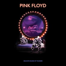 PINK FLOYD - DELICATE SOUND OF THUNDER 2CD (CD)