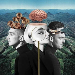 CLEAN BANDIT - WHAT IS LOVE? (CD)
