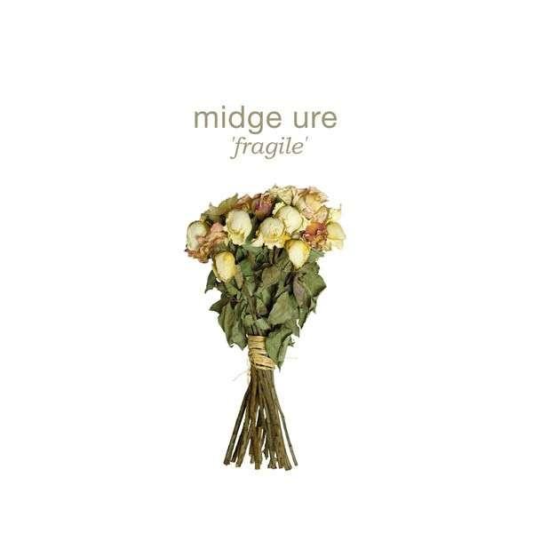 MIDGE URE - FRAGILE (CD)