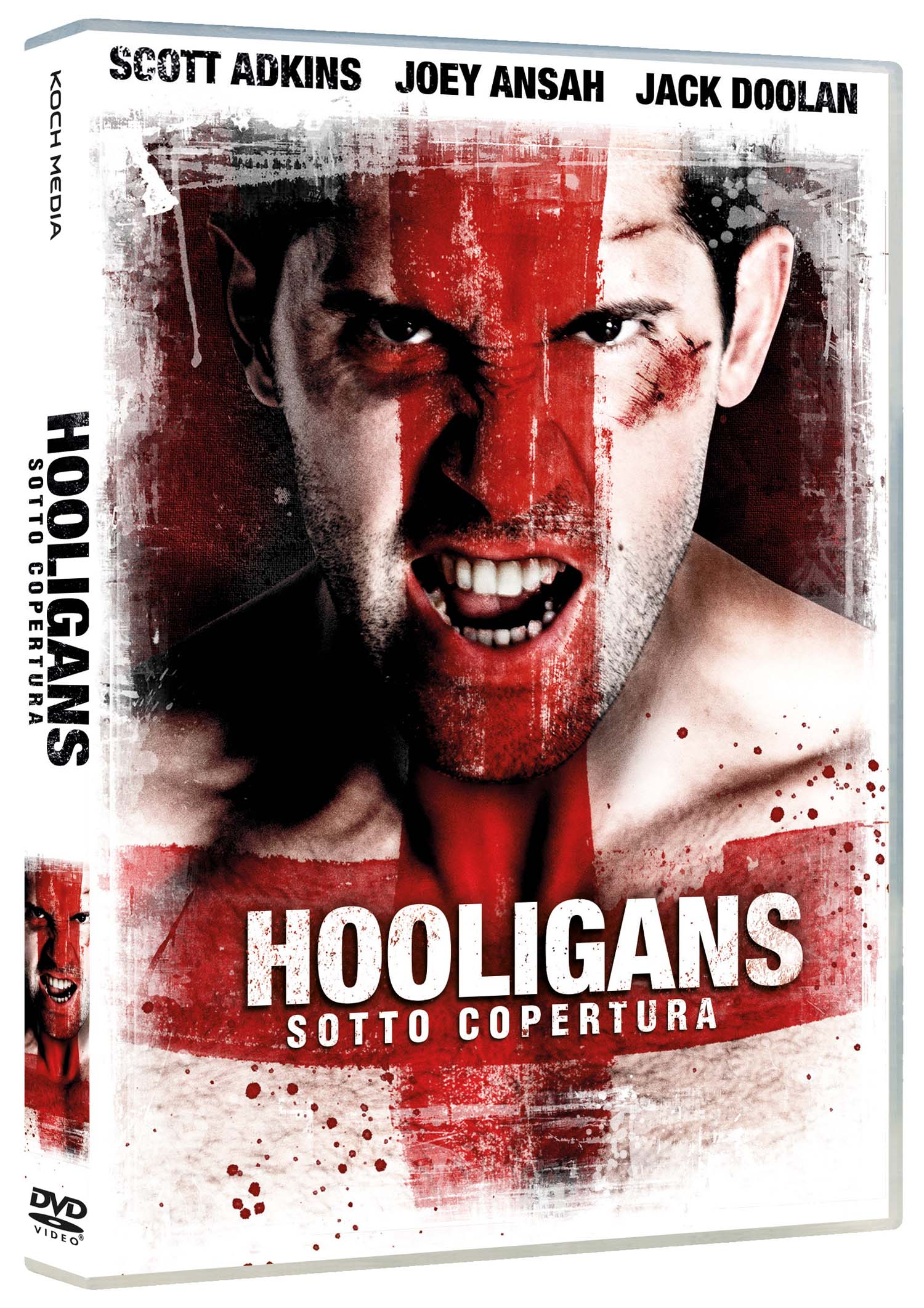 HOOLIGANS SOTTO COPERTURA (DVD)