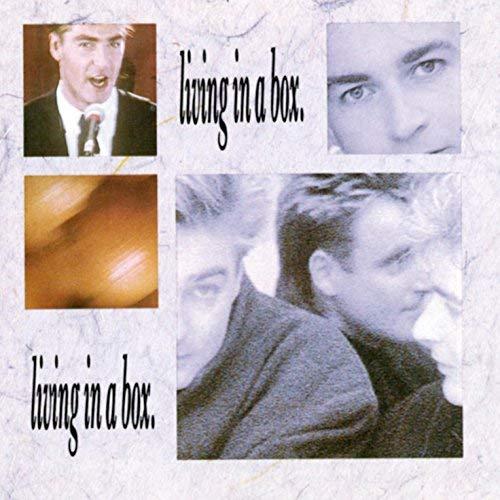 LIVING IN A BOX (LP)