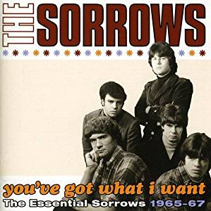 SORROWS (THE) - YOU'VE GOT WHAT I WANT (CD)