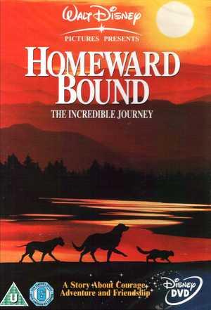 IN FUGA A QUATTRO ZAMPE / HOMEWARD BOUND (IMPORT) (DVD)