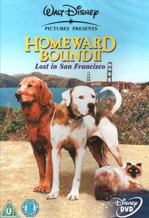 IN FUGA A QUATTRO ZAMPE 2 / HOMEWARD BOUND 2 (IMPORT) (DVD)