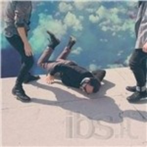LOCAL NATIVES - HUMMINGBIRD (CD)