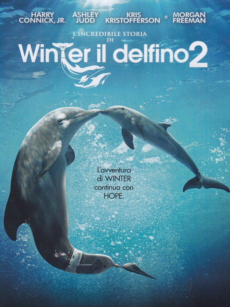 L'INCREDIBILE STORIA DI WINTER IL DELFINO 2 (DVD)