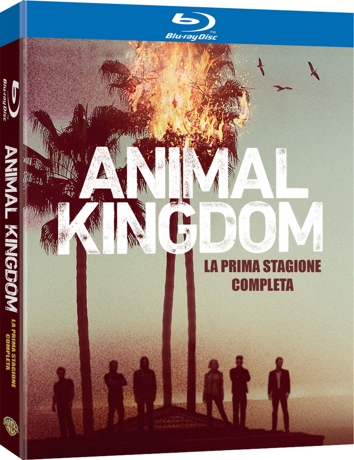COF.ANIMAL KINGDOM - STAGIONE 01 (2 BLU-RAY)