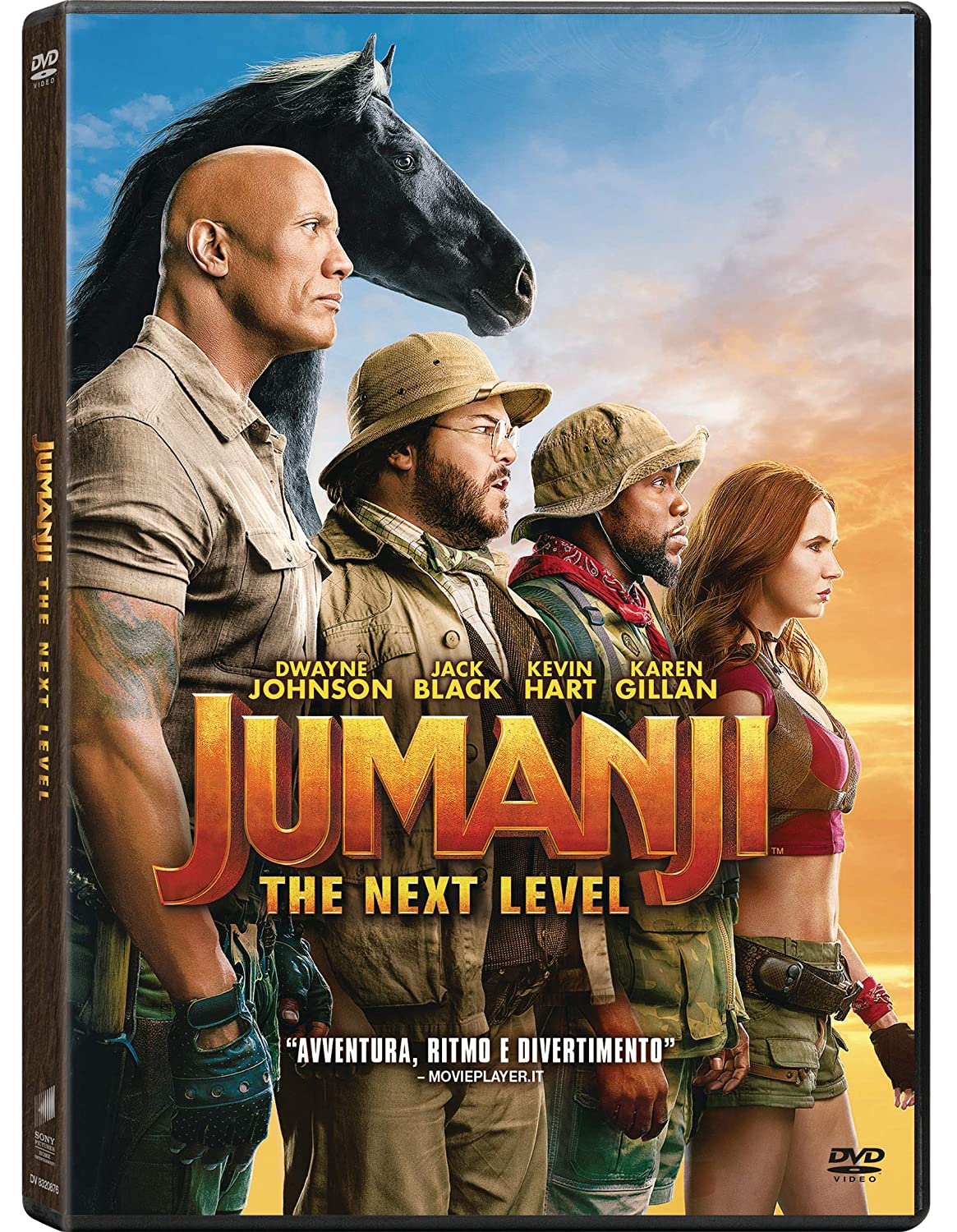 JUMANJI THE NEXT LEVEL (DVD)