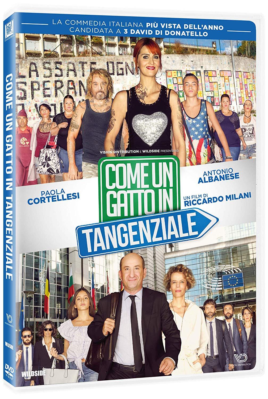 COME UN GATTO IN TANGENZIALE (DVD)