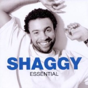 SHAGGY - THE ESSENTIAL (CD)