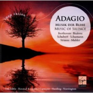 ADAGIO. MUSIC OF SILENCE (CD)
