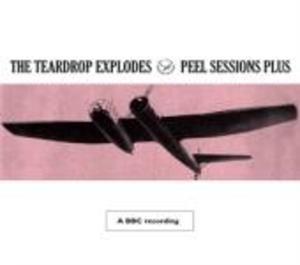 PEEL SESSIONS PLUS (CD)