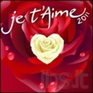 JE T'AIME 2011 -2CD (CD)