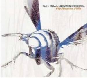 ALO - FLY BETWEEN FALLS (CD)